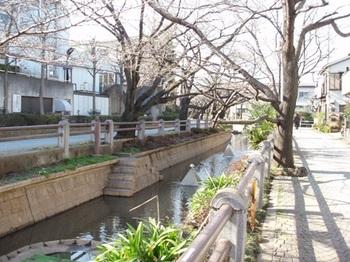 呑川親水公園